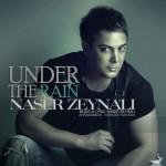 زیر بارون از ناصر زینلی