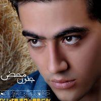 دانلود آهنگ جدید حامد شیخ زاده به نام جنون محض