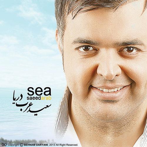 Saeed Arab Darya