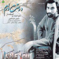 آلبوم دوست دارم از ناصر عبدالهی