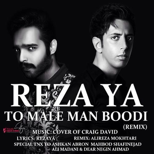 Rezaya To Male Man Budi Remix