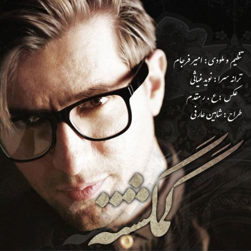 Amir Farjam Gomgashteh