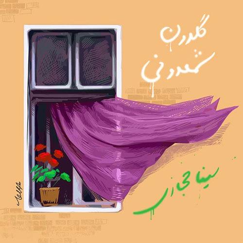 Sina Hejazi Goldoone Shamdoon