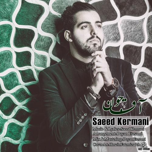 Saeed Kermani Agha Joon