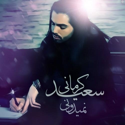Saeed Kermani Nemidooni