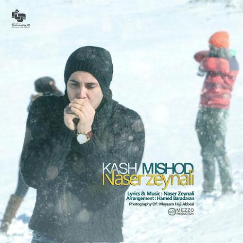 Naser Zeynali Kash Mishod