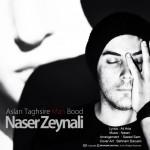 اصلا تقصیر من بود از ناصر زینعلی