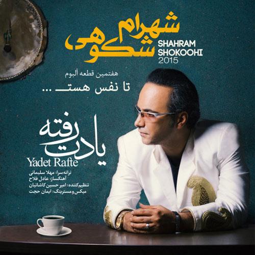 Shahram Shokoohi Yadet Rafte - دانلود آهنگ جدید شهرام شکوهی به نام یادت رفته