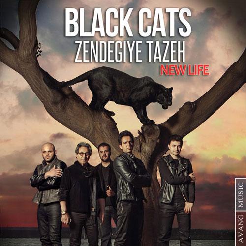 Black Cats Zendegiye Tazeh