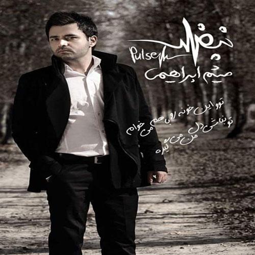 Meysam Ebrahimi Nabz