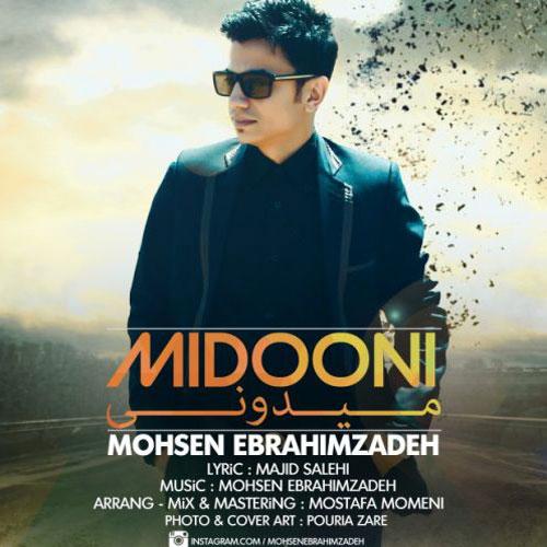 Mohsen Ebrahimzadeh Midooni