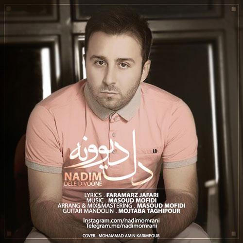 Nadim Dele Divoone - دل دیوونه از ندیم