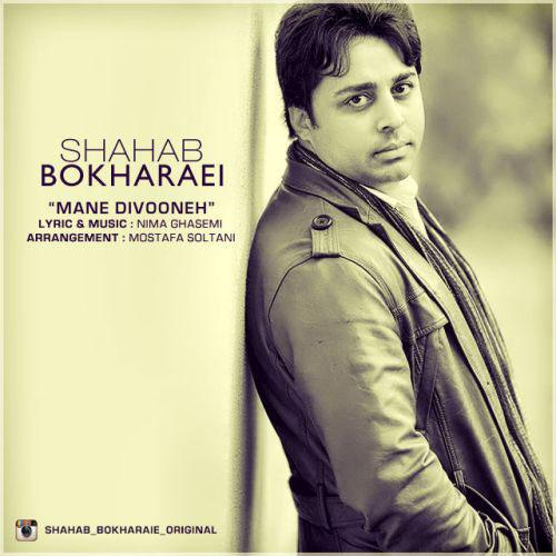 Shahab Bokharaei Dele Divoone