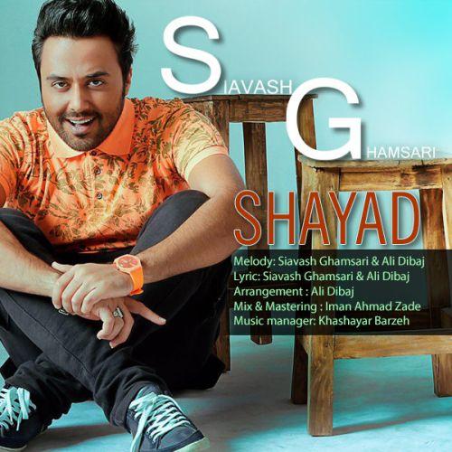 Siavash Ghamsari Shayad - دانلود آهنگ جدید سیاوش قمصری به نام شاید