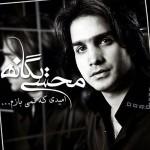دانلود آهنگ جدید محسن یگانه به نام امیدی که نمیبازم