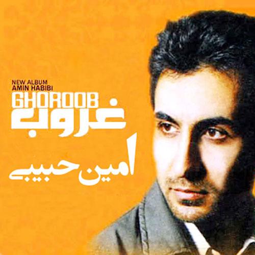 Amin Habibi Ghoroob