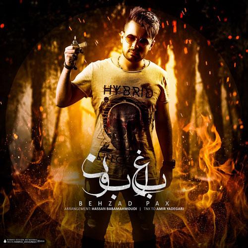 Behzad Pax Bagheboon