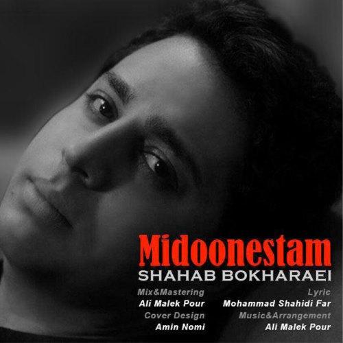 Shahab Bokharaei Midoonestam