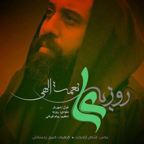 Roozbeh Nematollahi Ali