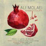 دانلود آهنگ جدید علی مولایی به نام شب طولانی