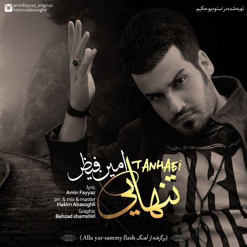 Amin Fayyaz Tanhaei