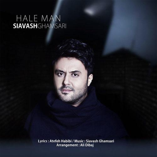 Siavash Ghamsari Hale Man