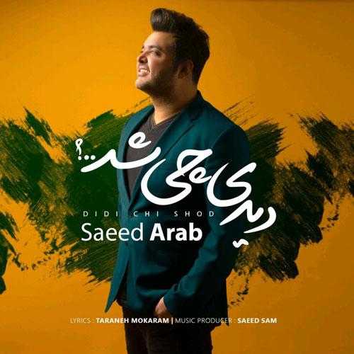 Saeed Arab Didi Chi Shod