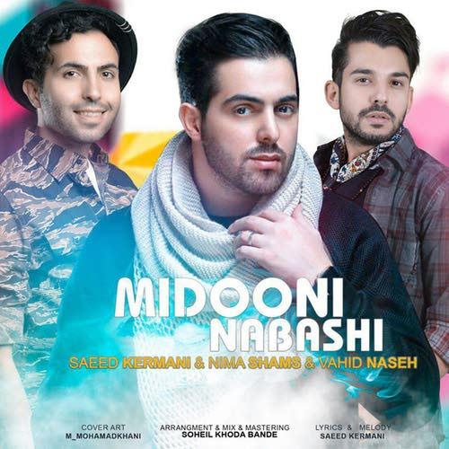 Saeed Kermani Nima Shams Vahid Naseh Midooni Nabashi