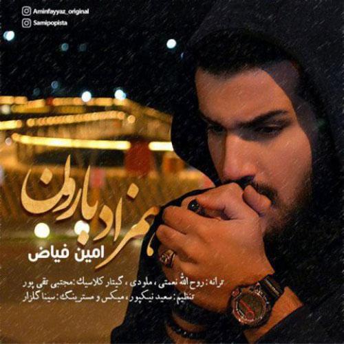 Amin Fayyaz Hamzade Baroon