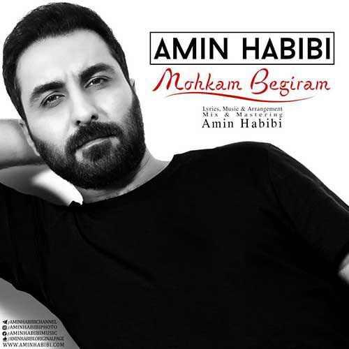 Amin Habibi Mohkam Begiram