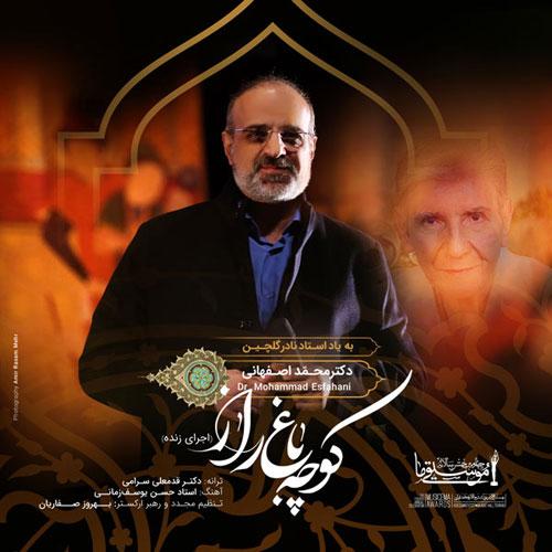 Mohammad Esfahani Koocheh Bagh E Raaz Live
