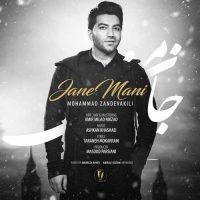 دانلود آهنگ جدید محمد زند وکیلی به نام جان منی