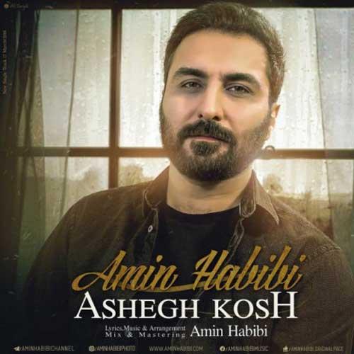 Amin Habibi Ashegh Kosh