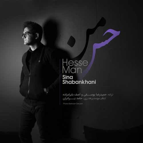 Sina Shabankhani Hesse Man