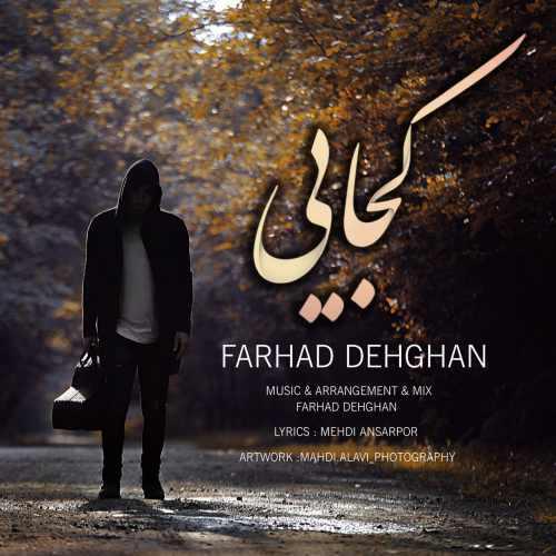 Farhad Dehghan Kojaei