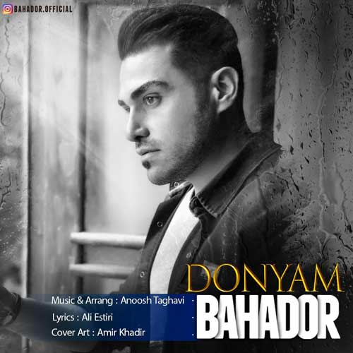 Bahador Donyam
