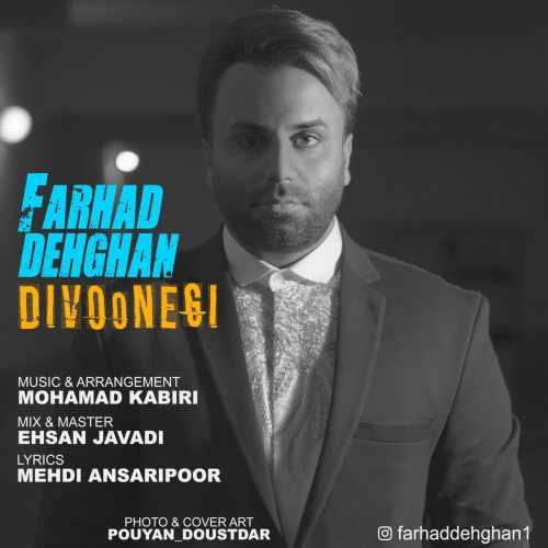 Farhad Dehghan Divoonegi