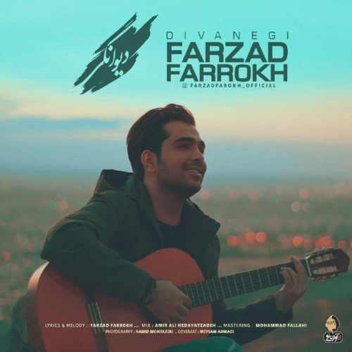 Farzad Farokh Divanegi