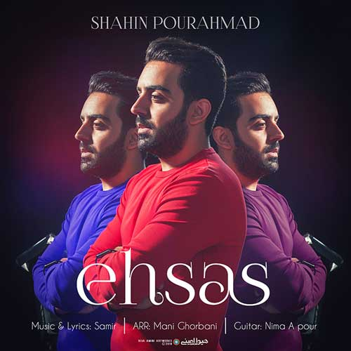 Shahin Pourahamd Ehsas