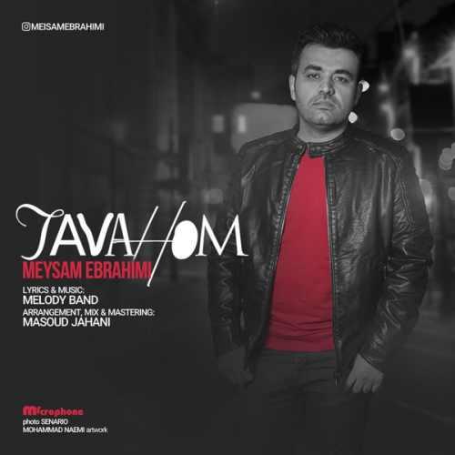 Meysam Ebrahimi Tavahom