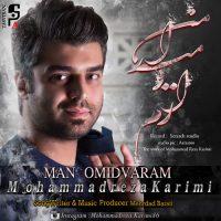 دانلود آهنگ جدید محمدرضا کریمی با نام من امیدوارم