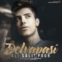 دانلود آهنگ جدید علی سلیم پور به نام دلواپسی