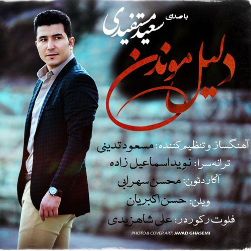 Saeid Mostafidi Dalile Moondan