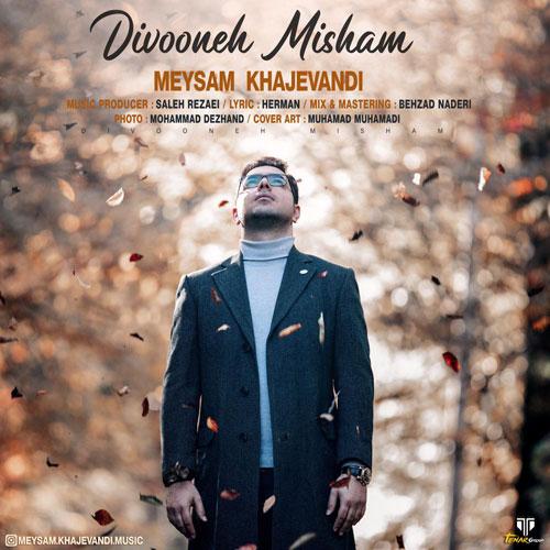 Meysam Khajevandi Divoone Misham