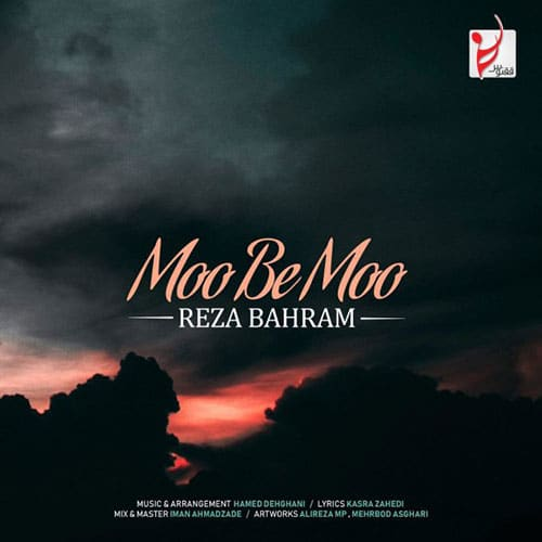 Reza Bahram Moo Be Moo