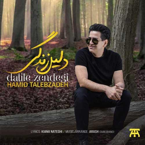 Hamid Talebzadeh Dalile Zendegi