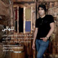 دانلود آهنگ جدید محسن اعظمی به نام تنهایی