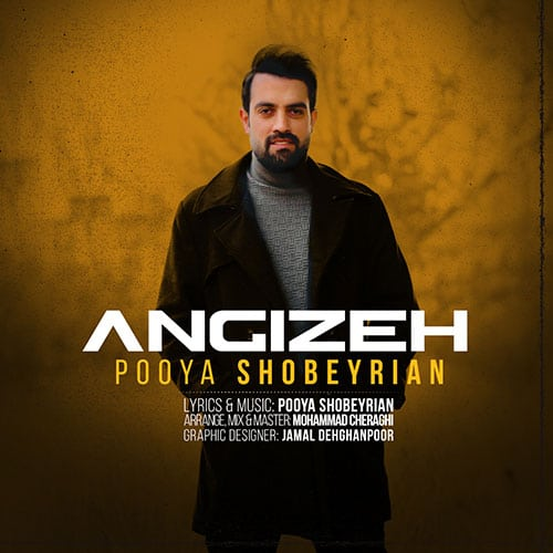 Pooya Shobeyrian Angizeh