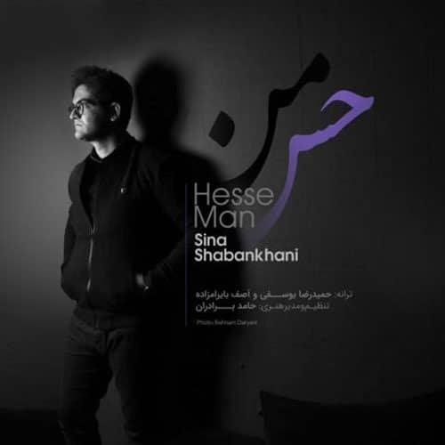 Sina Shabankhani Hesse Man Video