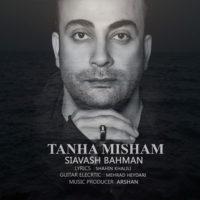 تنها میشم از سیاوش بهمن